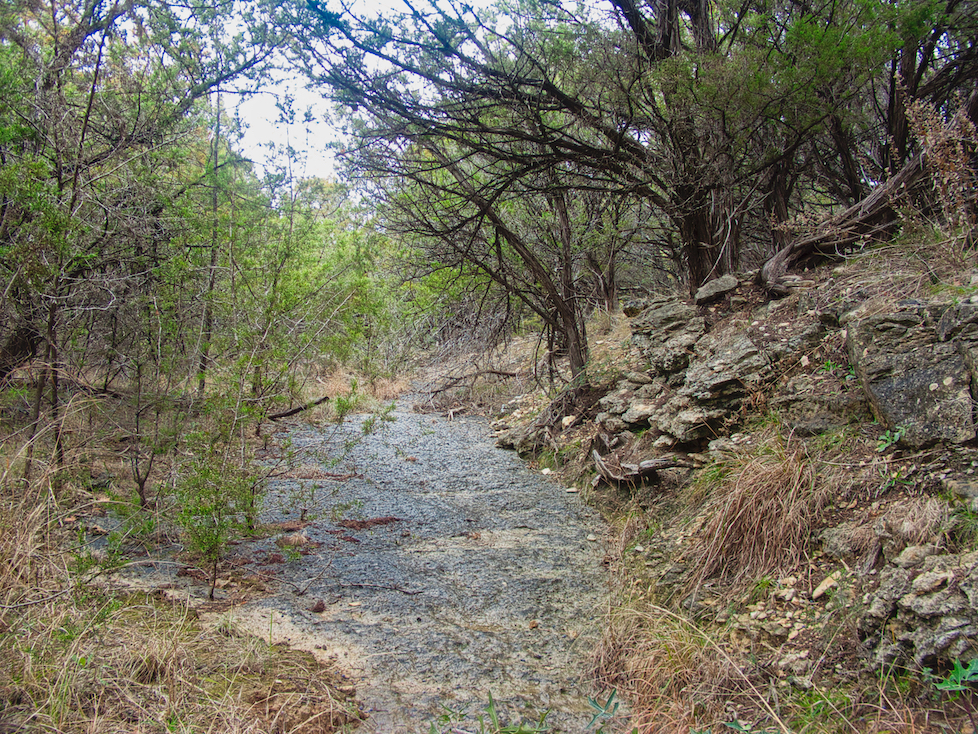 The small creek, dry after a rain